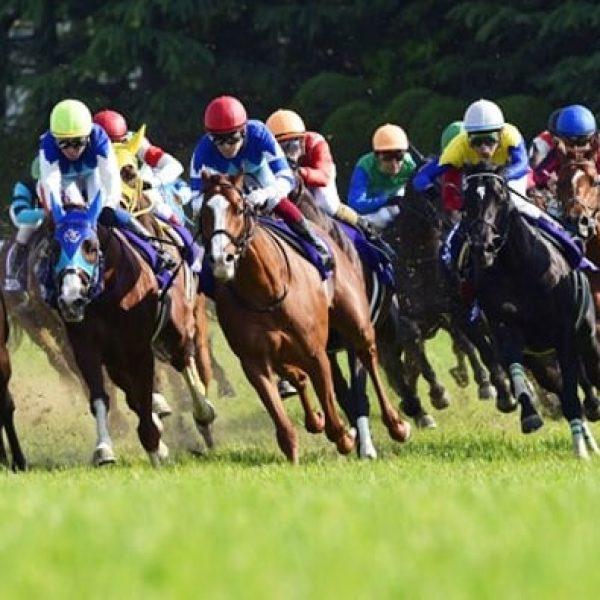 конни състезания от bet365